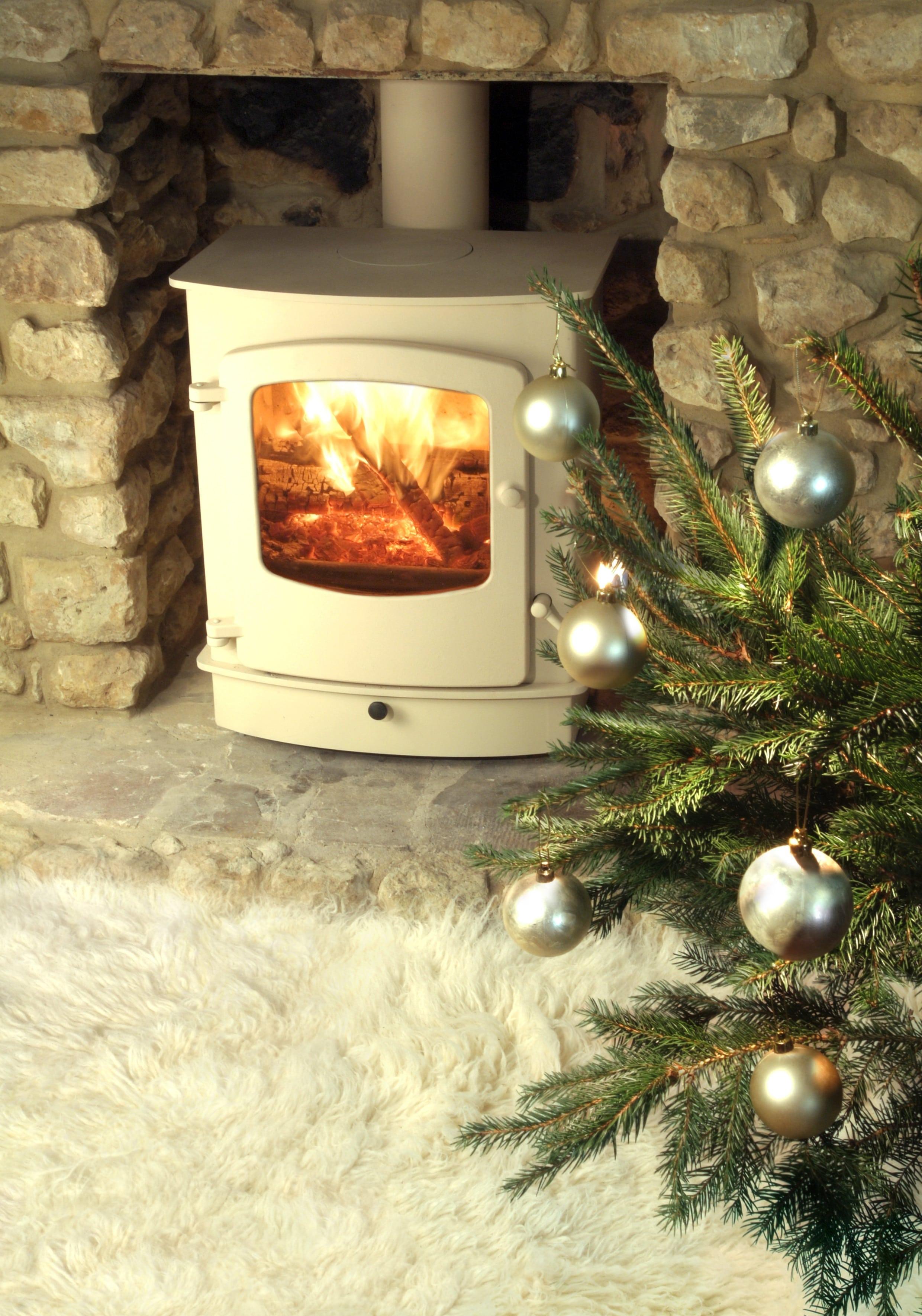 Ignite Stoves Amp Fireplaces Cove 2 Woodburning Amp Multi