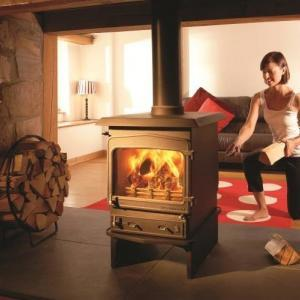 fireview woodwarm stove